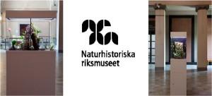 nrm_news